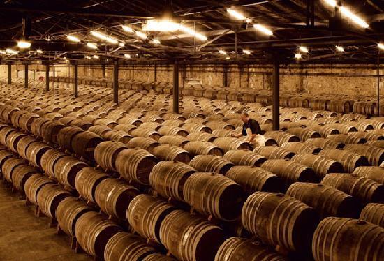 ham-u-ruou-remy-martin rượu remy martin chính hãng Tìm hiểu về rượu Remy Martin chính hãng Mỹ ship về Việt Nam ham u ruou remy martin