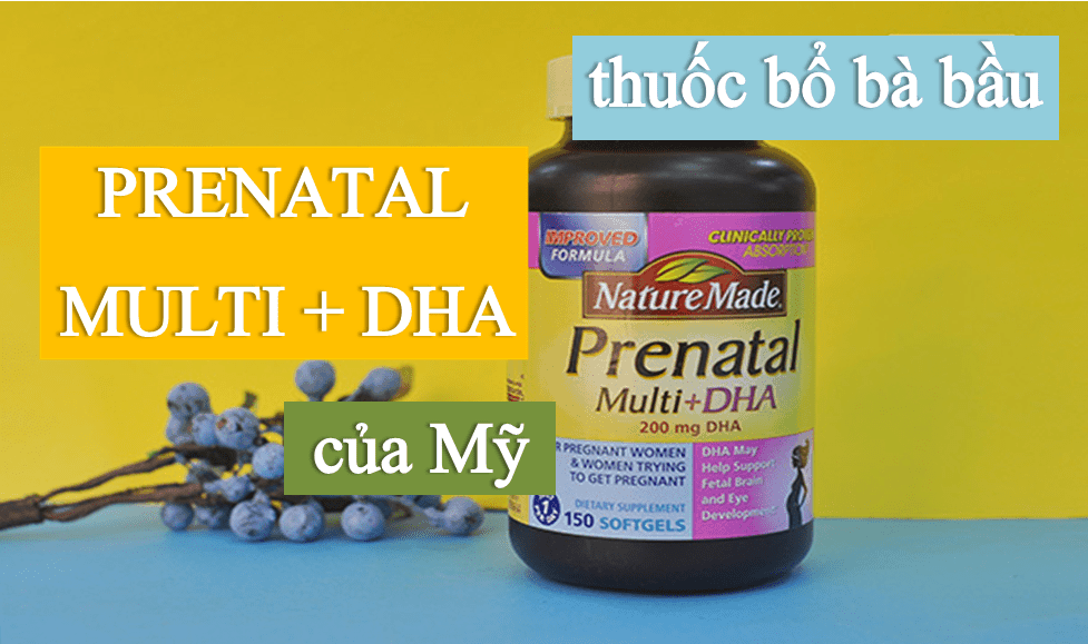 Image result for Vitamin tổng hợp cho bà bầu Nature Made Prenatal Multi + DHA (150 viên)